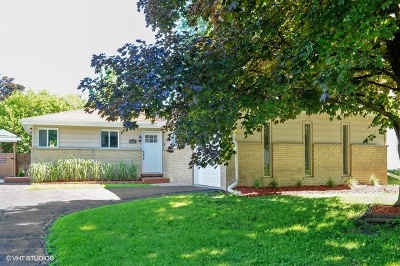Mount Prospect Single Family Home For Sale: 2003 East Tano Lane