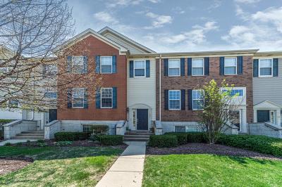 Bartlett IL Condo/Townhouse For Sale: $249,900