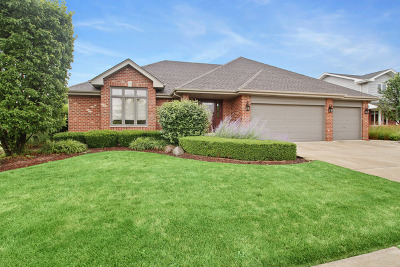 Tinley Park Single Family Home For Sale: 19631 Edgebrook Lane