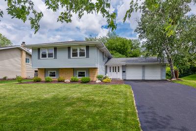 Glen Ellyn Single Family Home For Sale: 2s121 Churchill Lane