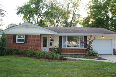 Palatine Single Family Home For Sale: 428 South Cedar Street