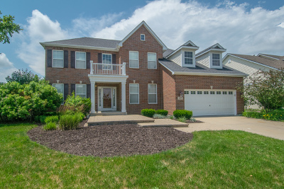 Shorewood Single Family Home For Sale: 817 Nightshade Lane