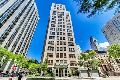Chicago IL Condo/Townhouse New: $2,850,000