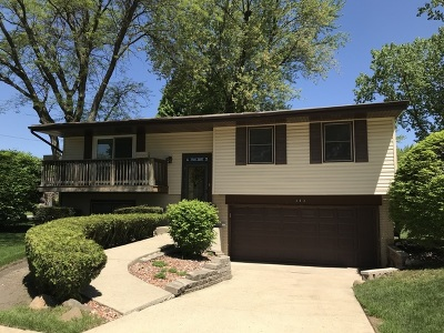 Buffalo Grove Single Family Home For Sale: 352 Chenault Road