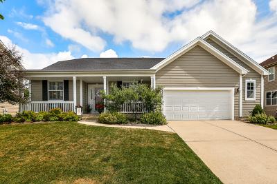 Elgin Single Family Home New: 3302 Chase Lane