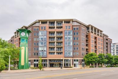 Chicago IL Condo/Townhouse New: $260,000