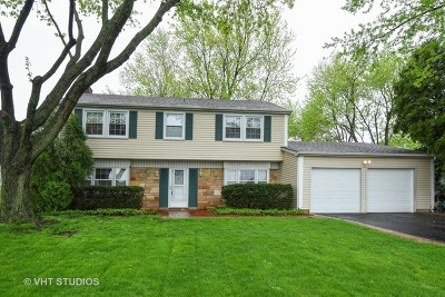 Buffalo Grove Single Family Home For Sale: 1083 Plum Grove Circle