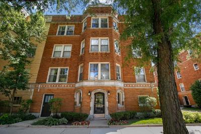 Oak Park Condo/Townhouse New: 605 Washington Boulevard #2N