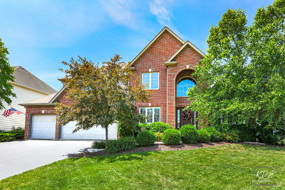 Plainfield Single Family Home For Sale: 12708 Shenandoah Trail