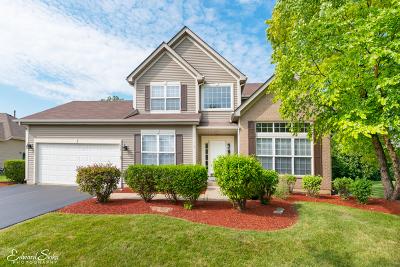 Crystal Lake Single Family Home For Sale: 1294 Amberwood Drive