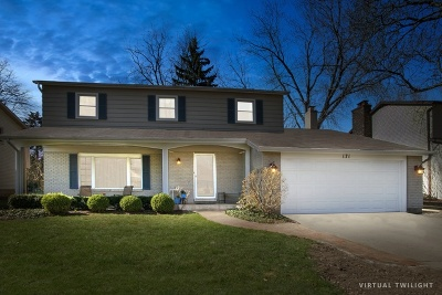 Buffalo Grove Single Family Home For Sale: 171 University Drive