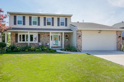 Elgin Single Family Home New: 604 Yellowstone Drive
