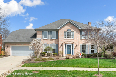 Naperville Single Family Home For Sale: 2640 Modaff Road