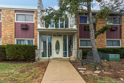 Lombard Condo/Townhouse For Sale: 212b Collen Drive #212