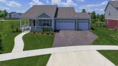 Elgin Single Family Home For Sale: 240 Water Lily Lane