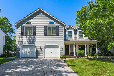 Naperville Single Family Home For Sale: 2013 Keim Drive