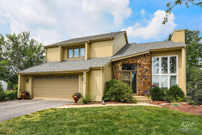 Naperville IL Single Family Home For Sale: $474,900