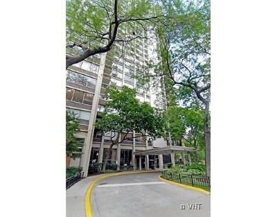 Chicago IL Condo/Townhouse New: $419,900