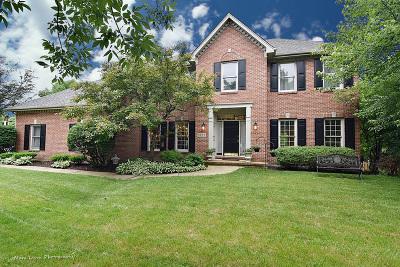 Naperville Single Family Home For Sale: 2812 Breckenridge Lane