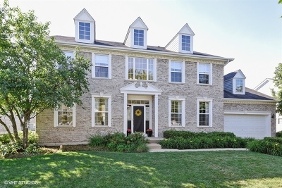 Elgin Single Family Home For Sale: 207 Atwell Street