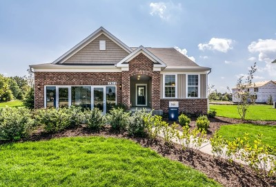 Naperville Single Family Home For Sale: 1503 Tail Leaf Court