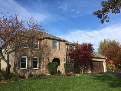 Naperville Single Family Home For Sale: 1613 Brentford Drive
