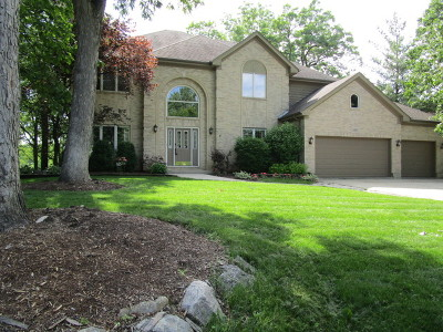 Bartlett IL Single Family Home For Sale: $455,000
