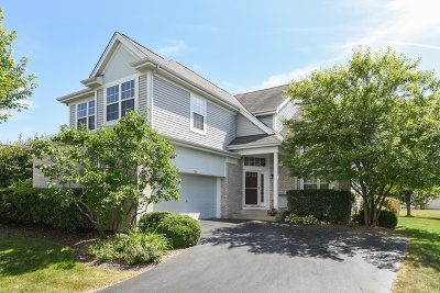 Crystal Lake Single Family Home For Sale: 735 Norwich Court