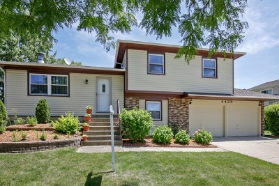 Hoffman Estates Single Family Home New: 4429 Huntington Boulevard