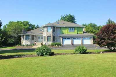 Homer Glen Single Family Home For Sale: 15341 West Pantigo Lane