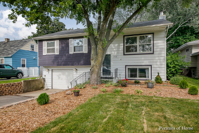 Westmont Single Family Home For Sale: 3911 North Washington Street