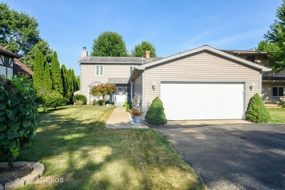 McHenry Single Family Home For Sale: 804 South Riverside Drive