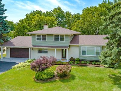 Schaumburg Single Family Home New: 219 East Niagara Avenue