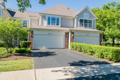 Naperville Condo/Townhouse For Sale: 3005 Crystal Rock Road