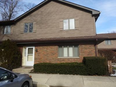Elgin Condo/Townhouse New: 322 N Airlite Street
