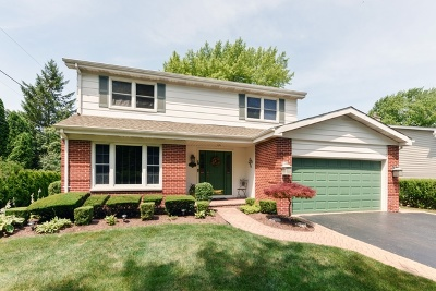 Mount Prospect Single Family Home New: 1704 North Beech Road