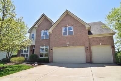 Hoffman Estates Single Family Home New: 5485 Nicholson Drive