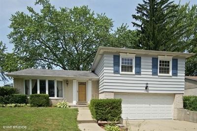 Mount Prospect Single Family Home New: 1414 North Indigo Drive
