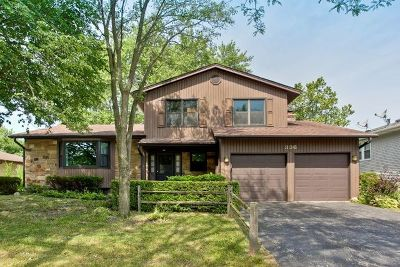 Buffalo Grove Single Family Home New: 336 Horatio Boulevard