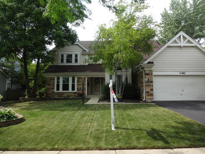 Bartlett IL Single Family Home For Sale: $400,000