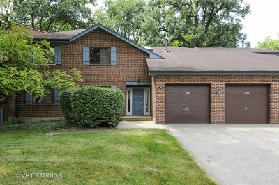 Lisle Condo/Townhouse For Sale: 1897 Portsmouth Drive #D