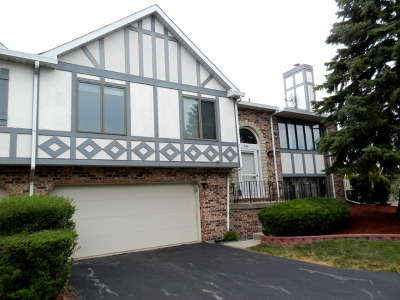 Tinley Park Condo/Townhouse New: 9361 Windsor Parkway #157