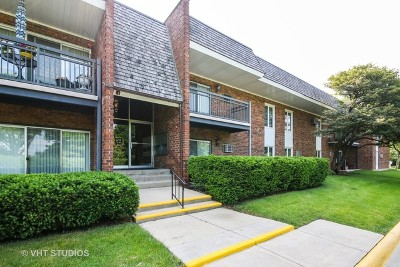 Downers Grove Condo/Townhouse For Sale: 4129 Saratoga Avenue #A216