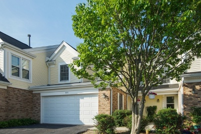 Hoffman Estates Condo/Townhouse For Sale: 4893 Prestwick Place