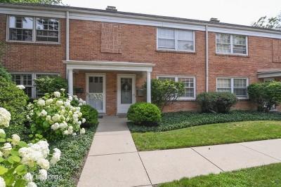 Winnetka Condo/Townhouse For Sale: 602 Lincoln Avenue #602
