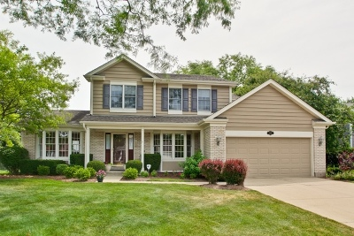 Libertyville Single Family Home For Sale: 1328 Forever Avenue