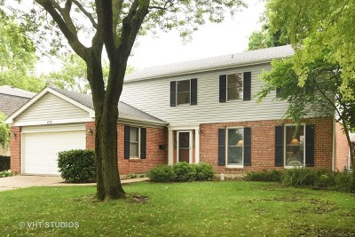 Palatine Single Family Home New: 635 East Cunningham Drive