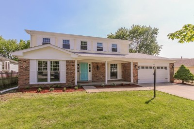 Lisle Single Family Home For Sale: 2827 Sun Valley Road