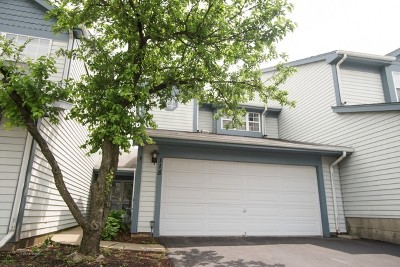 Schaumburg Condo/Townhouse New: 118 Sarahs Grove Lane