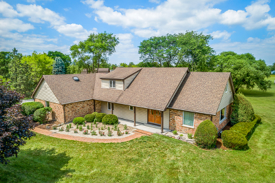Frankfort Single Family Home For Sale: 23045 South Wirth Lane